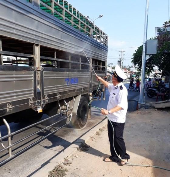 Mekong delta provinces make concerted efforts to combat African Swine Fever