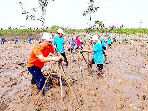 Communist Youth Union members clean up beach in Ha Tinh province