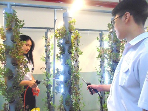 Tenth-graded students in Le Quy Don High School are taking care of plants using aeroponics technology in the project 'Air Quality Improvement for Basement Parking Lot'