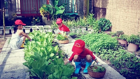 HCMC education sector strives to green schools