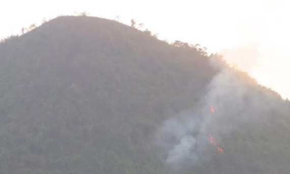 Protective forest fire in Thai Nguyen province (Photo:VNA)