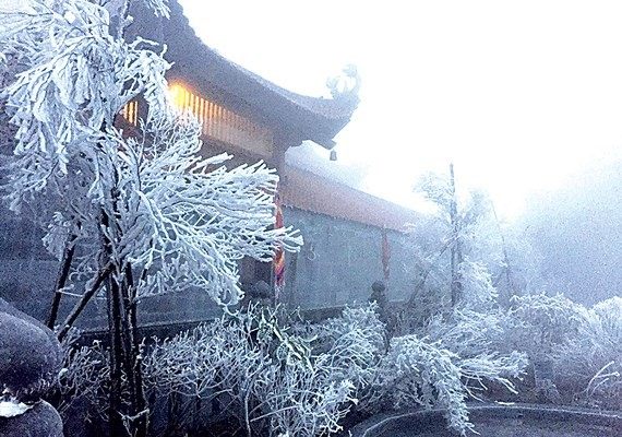 Frost appears in Fansipan mountain peak (Photo:VNA)