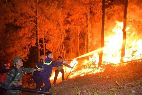 Central provinces swelter huge forest fire spells