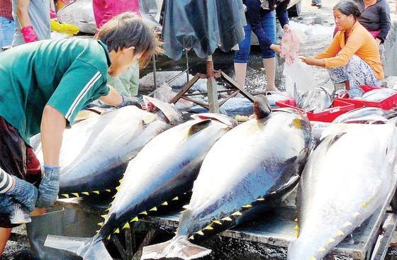 Hải sản vượt qua tôm, cá tra về kim ngạch xuất khẩu