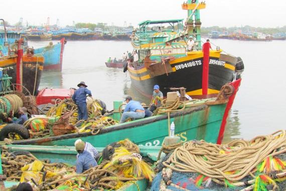 Ngư dân nhanh chóng đưa tàu vào bờ để neo đậu tránh bão