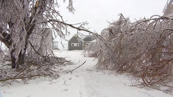 Tuyết rơi dày ở Quebec. Ảnh: Cbc.ca