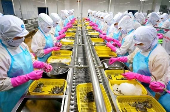 我國蝦類出口經常遭遇反傾銷稅羈絆。