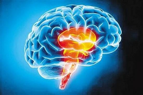 """研究發現大腦同一""""開關""""控制睡眠和喚醒。(示意圖源:互聯網)"""