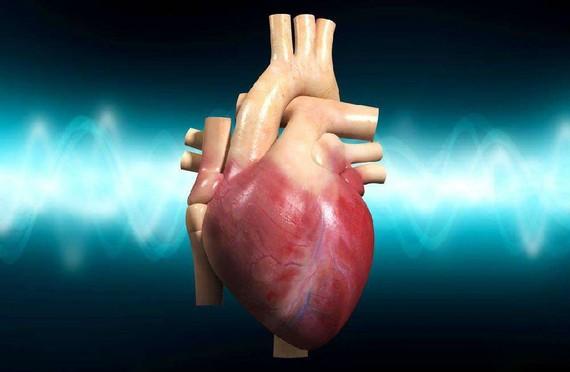 心臟好不好看這5個部位。(示意圖源:互聯網)