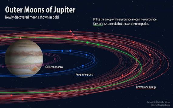 新發現的12顆木星衛星運行軌跡。(圖源:卡內基科學學會)