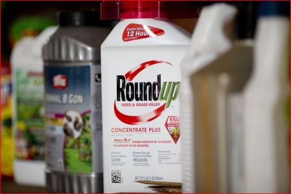 """圖為拜耳公司(Bayer)生產的""""Roundup""""草甘膦除草劑。(圖源:互聯網)"""
