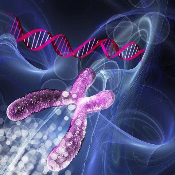 新方法成功從小鼠體內去除愛滋病病毒。(示意圖源:互聯網)