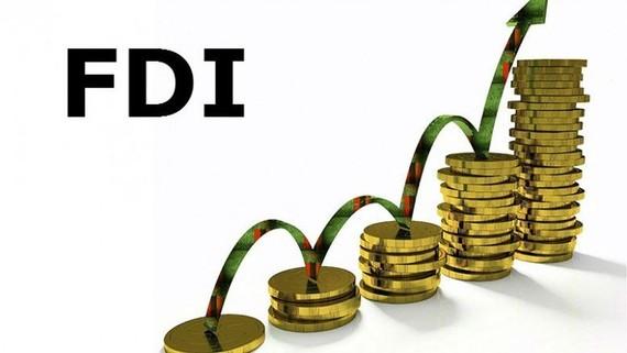 FDI进入猛迅发展时期