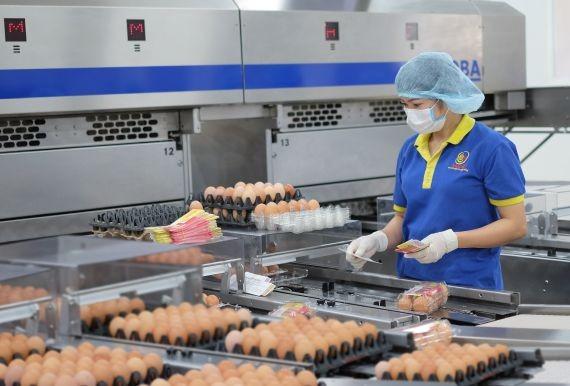 巴勳公司革新生产线提高产品质量。