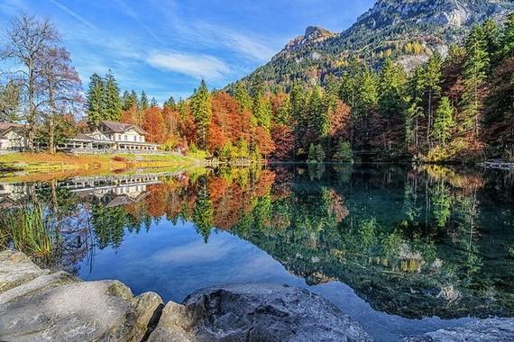 迷人的湖上秋色。(圖源:互聯網)