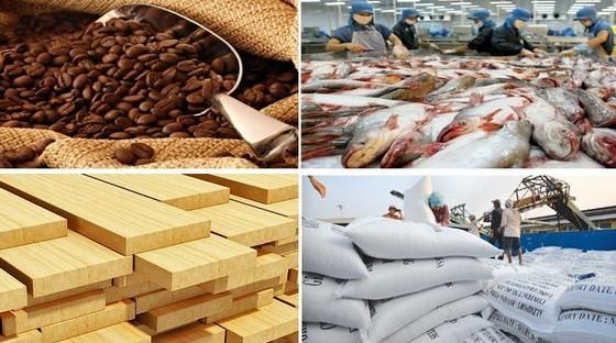 鼓励通过国贸出口中国市场