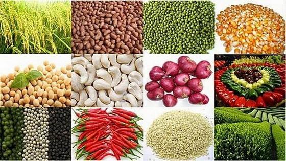 我国农产品加工工业在规模和附加值方面都蓬勃增长,每年达5% 至7%。(示意图源:互联网)