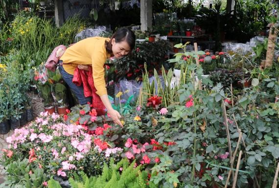 Người dân đi mua hoa trang trí ngày tết