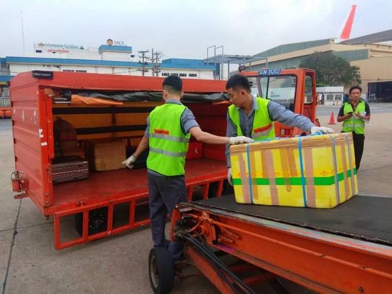 Nhân viên bốc xếp tại sân bay Tân Sơn Nhất. Ảnh minh họa