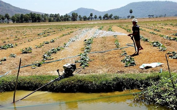 Ensuring water security is becoming an urgent task for Vietnam in the context of climate change impacting all aspects of life, heard a conference on Wednesday. (Photo: baotainguyenmoitruong.vn)