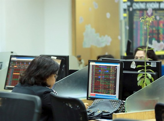 Investors at Bao Viet Securities Company. (Photo: VNS)