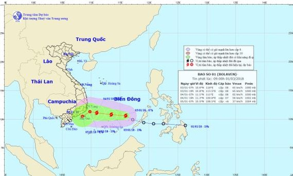 Bolaven storm direction in the East Sea on January 3 (Photo: nchmf)Bolaven storm direction in the East Sea on January 3 (Photo: nchmf)