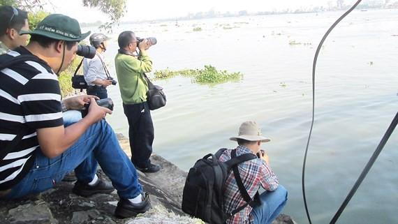 Researchers and reporters survey pollution in the Dong Nai River (Photo: SGGP)