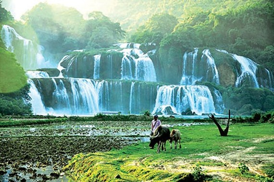 Ban Gioc waterfall in Cao Bang (Source: SGGP)