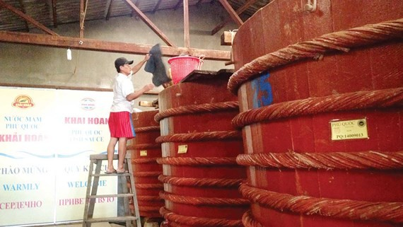 Traditional fish sauce production in Phu Quoc Island. (Photo: SGGP)