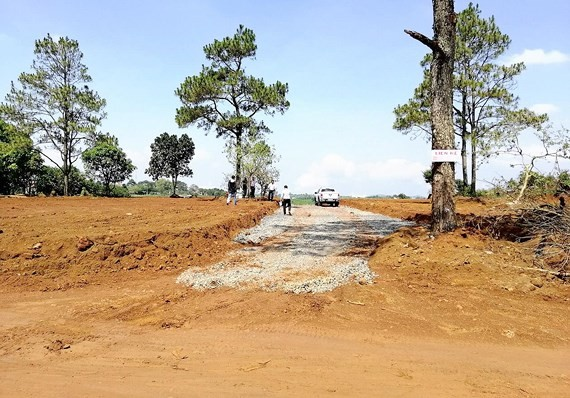 Many land parcels in Bao Loc district, Lam Dong province have been leveled and advertised to be in a favourale postion in the near futute to lure buyers (Photo: SGGP)
