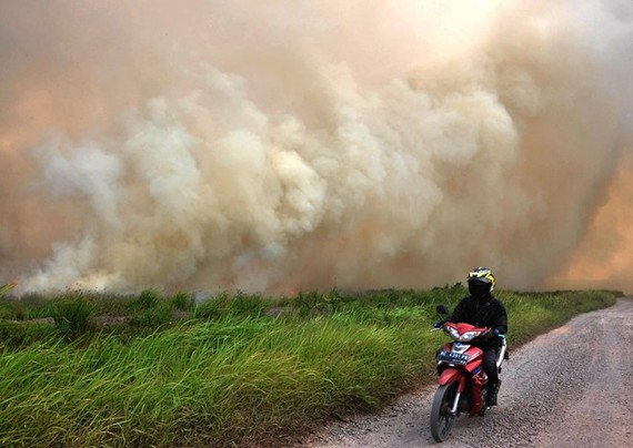 A forest fire in Ogan Ilir regency of South Sumatra province, Indonesia, on August 5 (Photo: Xinhua/VNA)