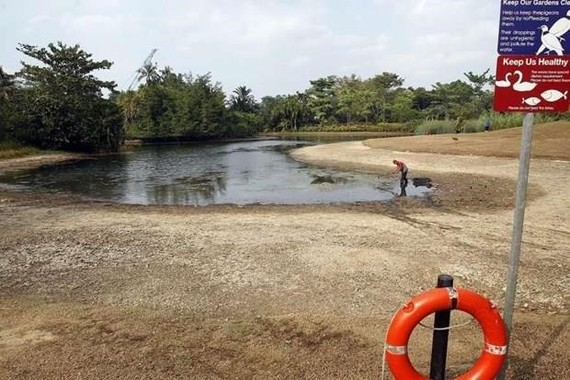 Low water levels are recorded in ponds, rivers in Singapore (Source: straitstimes)
