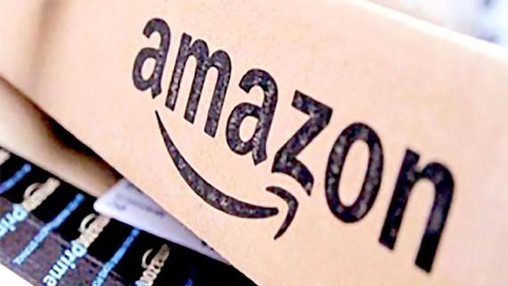 Ấn Ðộ: Bán hàng online có thể đạt giá trị 50 tỷ USD