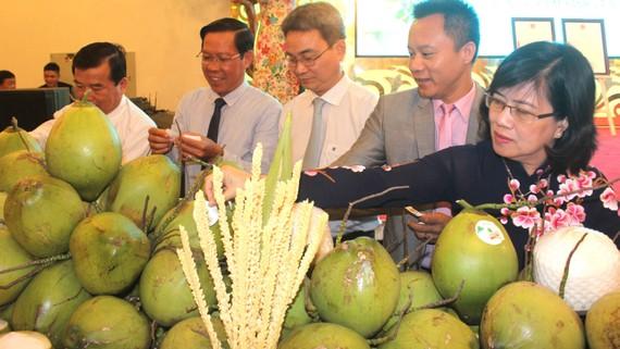 Dừa xiêm xanh Bến Tre được chứng nhận chỉ dẫn địa lý  tạo hướng ra cho ngành dừa