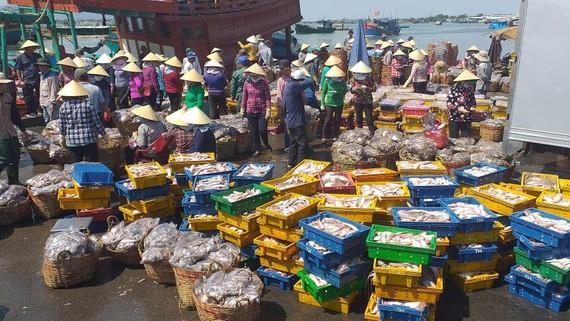 Chung tay ngăn chặn đánh bắt hải sản trái phép