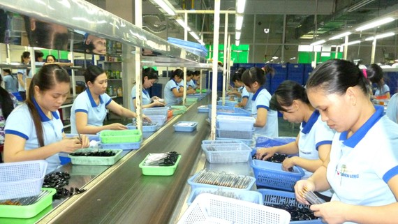 Sản xuất bút bi tại doanh nghiệp tư nhân.  Ảnh: CAO THĂNG