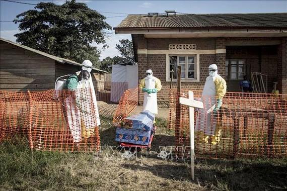 Nhân viên y tế phun thuốc khử trùng xung quanh quan tài một bệnh nhân tử vong do Ebola tại Beni, CHDC Congo. Ảnh: AFP/TTXVN