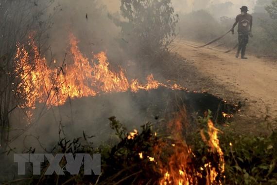 Binh sĩ Indonesia tham gia dập các đám cháy từng tại Ogan Ilir, tỉnh Nam Sumatra. Nguồn: Reuters/TTXVN