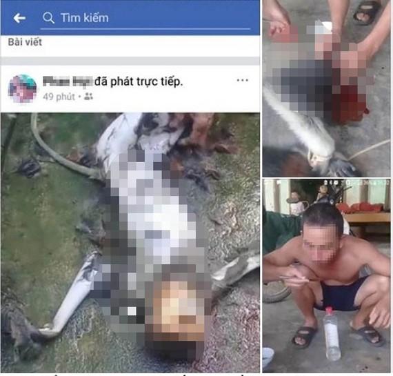 Hình ảnh giết cá thể voọc rồi đăng lên Facebook gây phẫn nộ