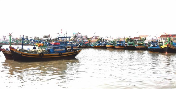 Nghề mành chụp 4 tăng gông ra đời góp phần giải quyết bài toán thiếu lao động,  giúp ngư dân chuyển đổi nghề hiệu quả
