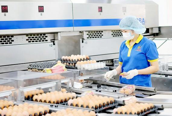 Doanh nghiệp TPHCM đầu tư dây chuyền sản xuất xanh - sạch