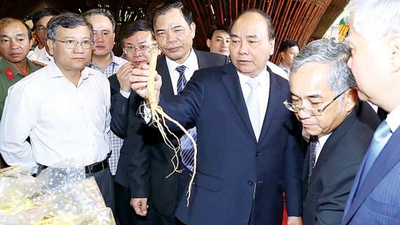 Thủ tướng Nguyễn Xuân Phúc xem các gian hàng trưng bày sản phẩm về sâm Ngọc Linh Kon Tum