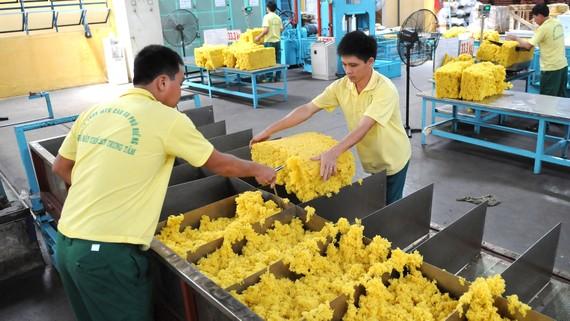 Cao su thiên nhiên, một mặt hàng xuất khẩu nhiều sang Trung Quốc.   Ảnh: CAO THĂNG