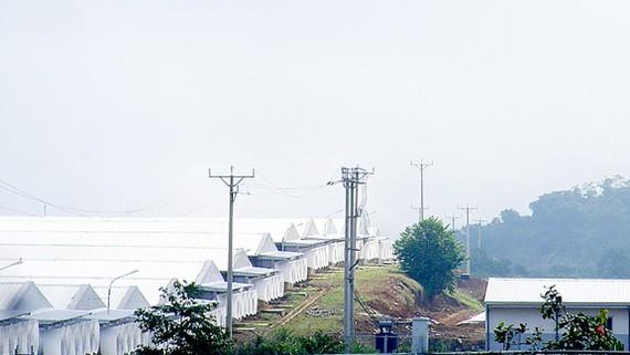 Trang trại heo ngàn tỷ đồng của Công ty TNHH MNS Farm Nghệ An gây ô nhiễm môi trường