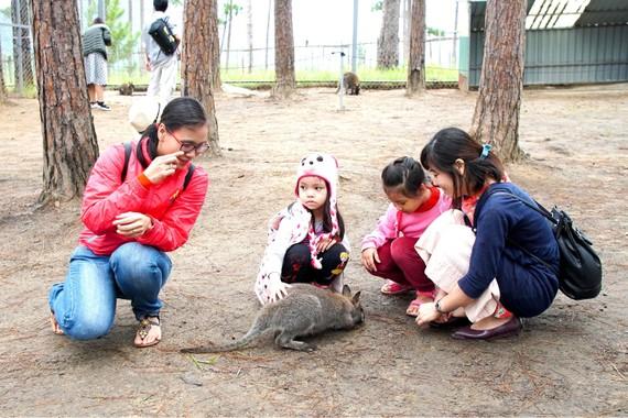 Cha mẹ có vai trò quan trọng trong việc giáo dục nhân cách cho con cái (ảnh: Mẹ hướng dẫn các con cách yêu thương động vật tại VooDoo Đà Lạt). Ảnh: HOÀNG HÙNG