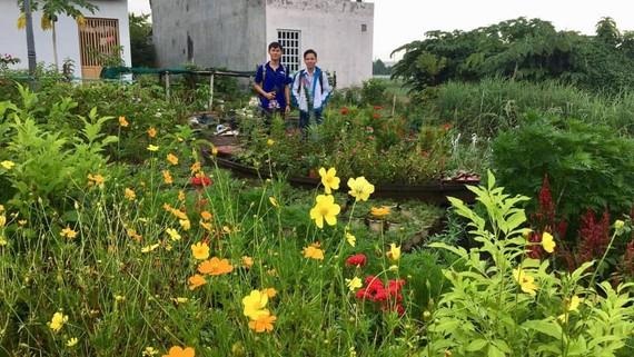 Một số bạn trẻ tình nguyện biến khu đất nhếch nhác ở khu phố 4 phường Tăng Nhơn Phú A, quận 9 thành khu vực trồng hoa đầy màu sắc. Ảnh: NGUYỄN THƯƠNG