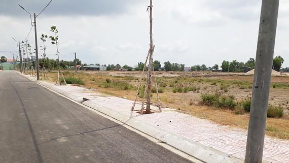 Dự án khu dân cư chưa phân lô mà đã bán nền khi chỉ mới có con đường