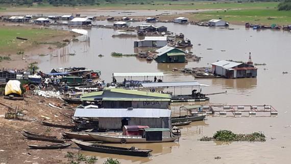 Cá lồng bè nuôi quá dày trên sông La Ngà, huyện Định Quán, tỉnh Đồng Nai cũng là nguyên nhân gây ô nhiễm