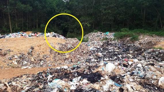 Một góc bãi rác thải và khe nước đổ về hạ lưu