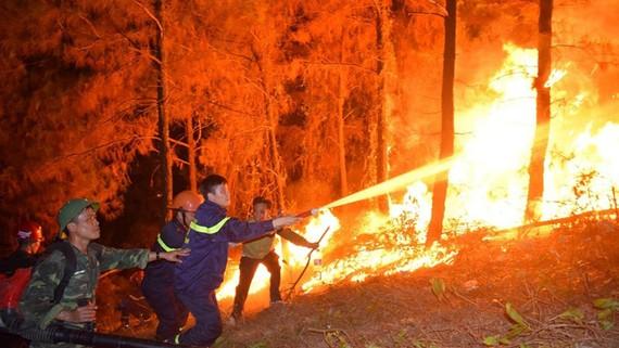 Lực lượng chức năng khống chế vụ cháy rừng ở  Hà Tĩnh. Ảnh: DƯƠNG QUANG